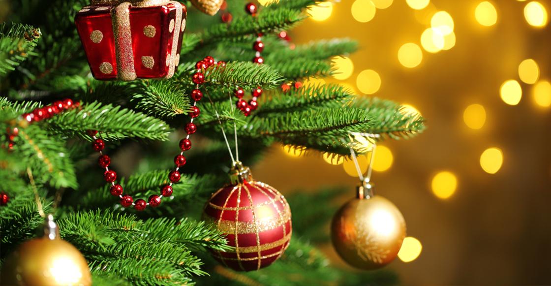 Quieres un rbol de navidad perfecto solo tienes que - Arbol de navidad fotos ...