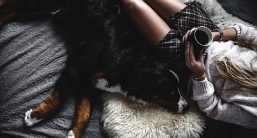 Según la ciencia, compartir cama con tu perro es bueno para dormir