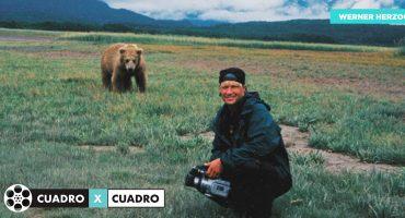 CuadroXCuadro: 'Grizzly Man' y la abrumadora indiferencia de la naturaleza