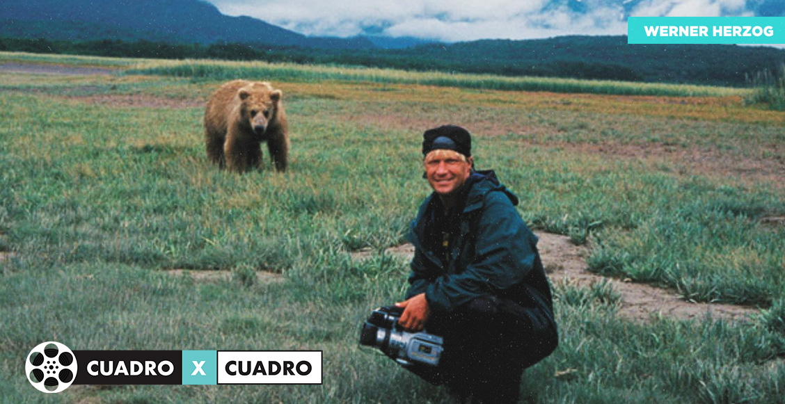 CuadroXCuadro: 'Grizzly Man'