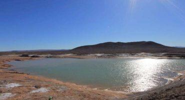 Lluvias en el desierto de Atacama acaban con el 85% de su vida microbiana