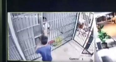 Y en la nota idiota del día: Así se escapa de prisión en Tailandia