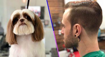 Dos en uno: Esta estética atiende tanto a perritos como a humanos