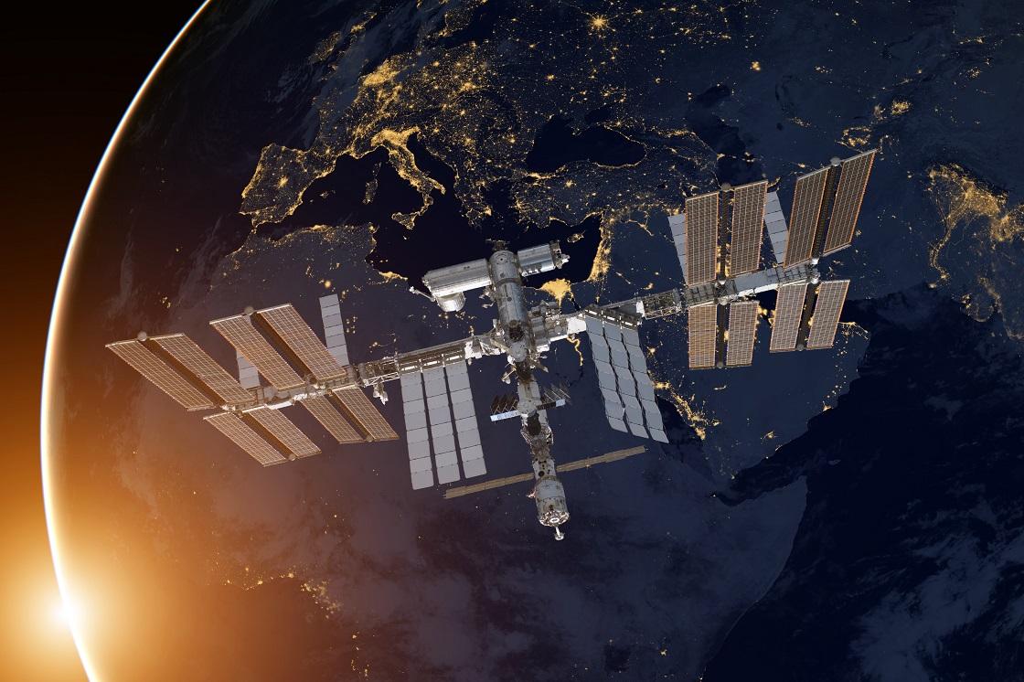 Estación Espacial Internacional - Bichos espaciales