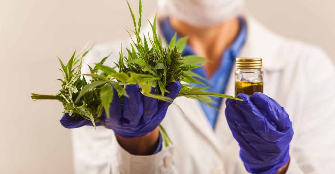Cofepris lanza otros 19 productos elaborados con marihuana que se venderán en México