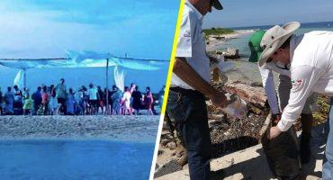 PROFEPA multa con más de 4 millones a organizadores de una fiesta en Isla Salmedina