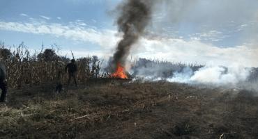 No hay hallazgo de explosivos en aeronave en que viajaba Martha Érika Alonso: Durazo