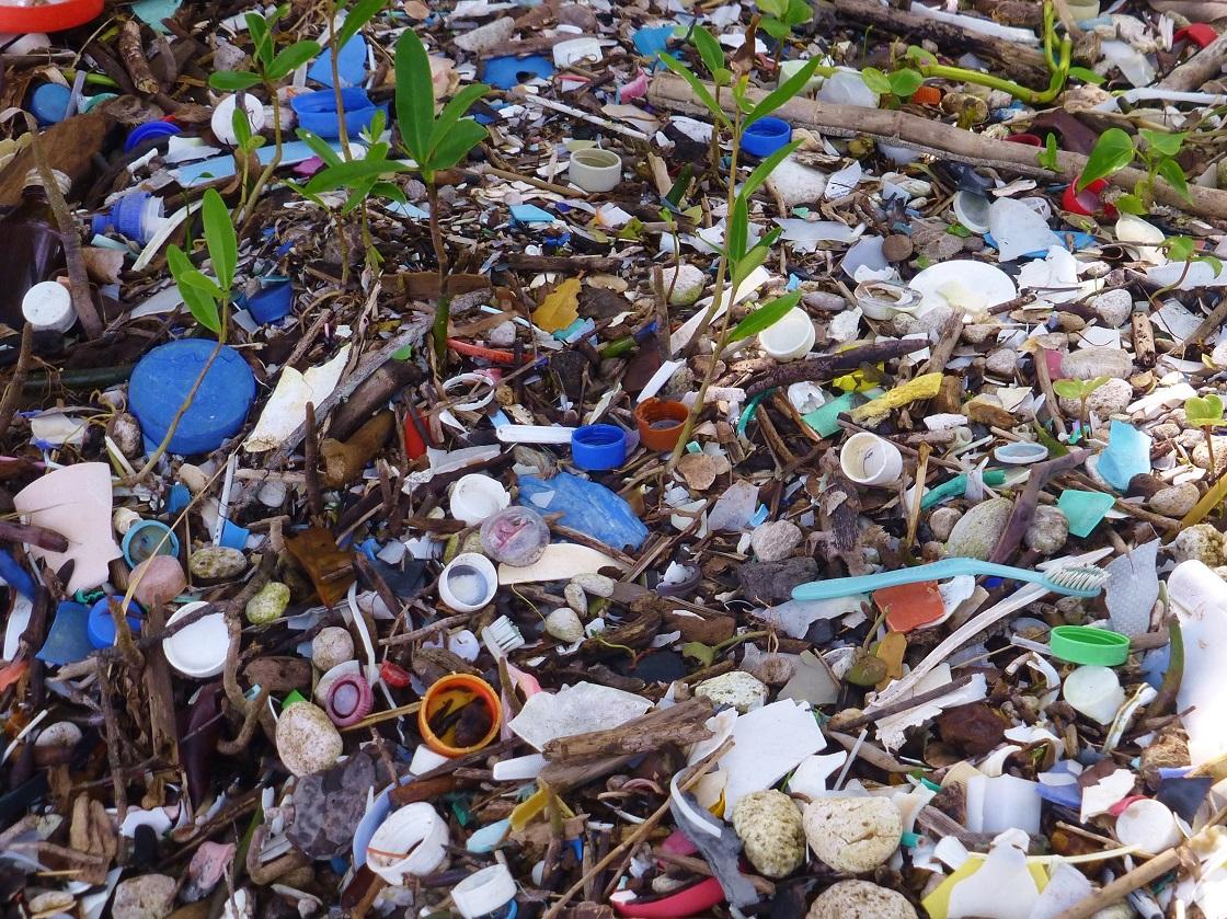 Microplásticos - Contaminante en tierra y agua