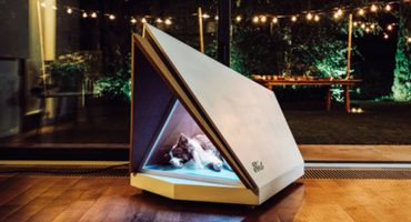 ¡Genios! Crean una casa para perritos que anula el ruido de fuegos artificiales