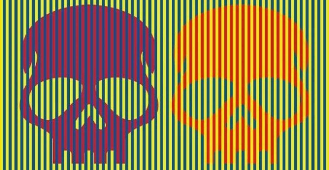 Cráneos con colores aparentemente diferentes