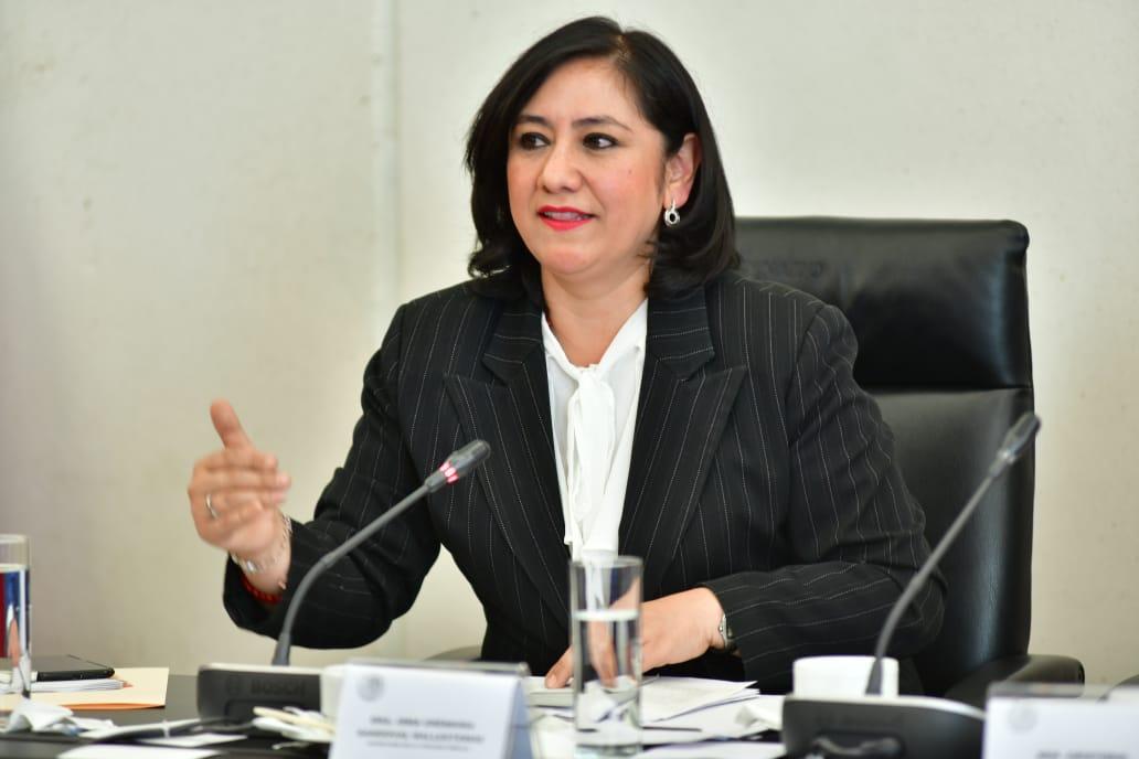 Irma Sandoval, titular de la SFP