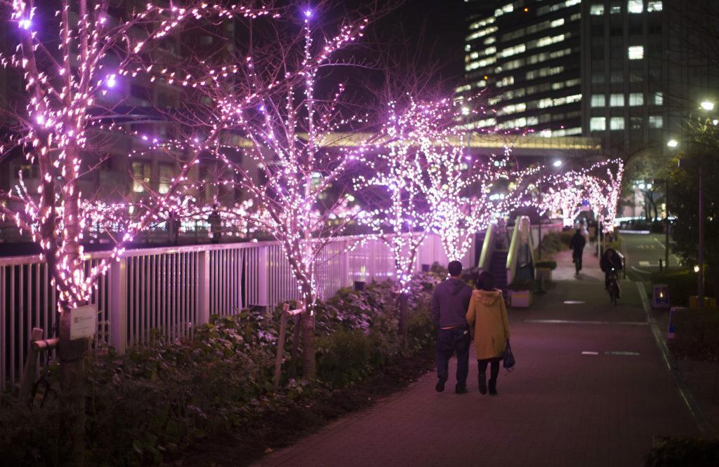 ¡Wow! Mira cómo un barrio de Tokio adornó sus calles con luces LED ecológicas