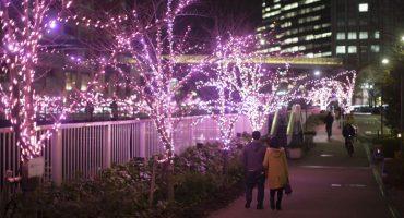 Tokio adornó sus calles con luces LED ecológicas que parecen flores de cerezo