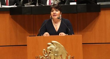 Nestora Salgado presentará 176 expedientes de