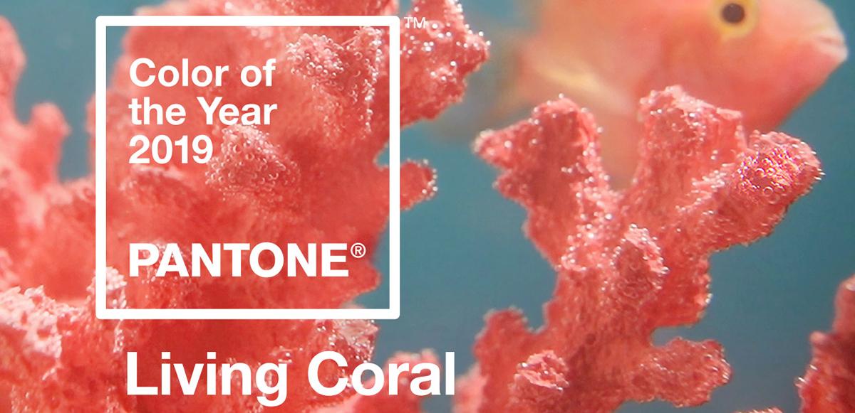 La razón por la que Pantone eligió 'Living Coral' como Color del 2019