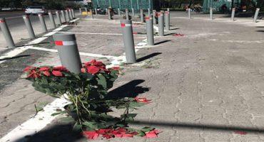 En el primer día de Los Pinos como centro cultural, acusan que se robaron las nochebuenas