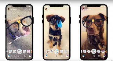Tu perro tendrá más seguidores: Snapchat lanza filtros especiales para ellos
