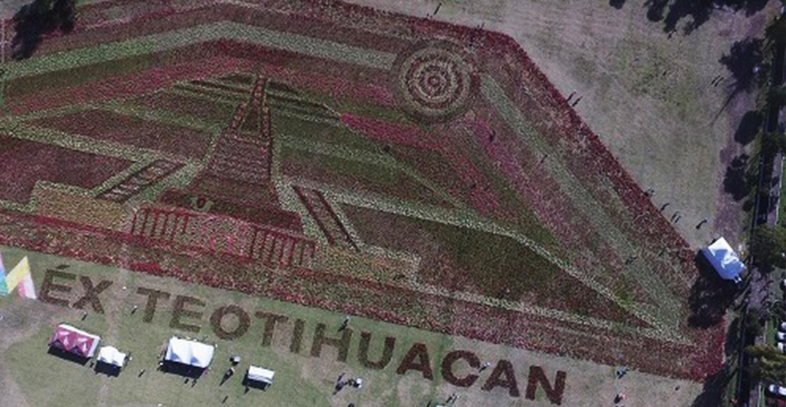 ¡Orgullo Nacional! El tapete floral de Teotihuacán rompió Récord Guinness