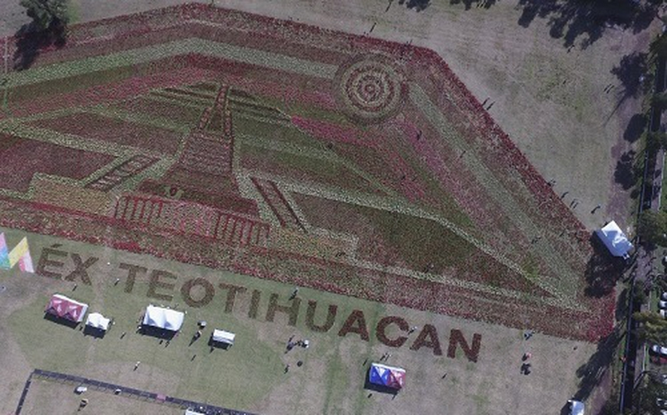 tapete-floral-teotihuacan-rompe-record-guinness