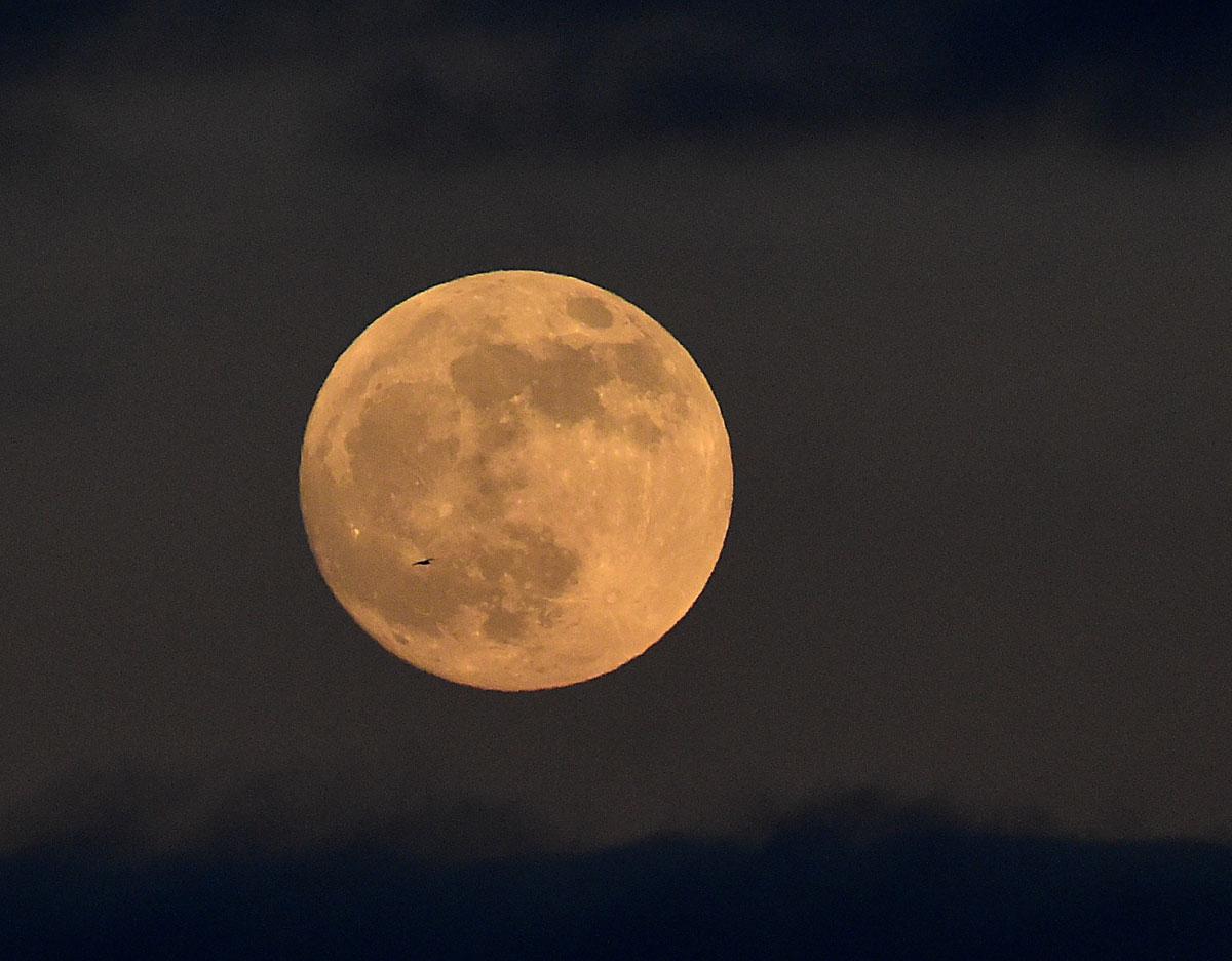 Eclipse Lunar del 2019