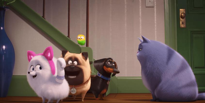 ¿Cómo ser un gato? El nuevo tráiler de La Vida Secreta de tus Mascotas 2 te lo dice