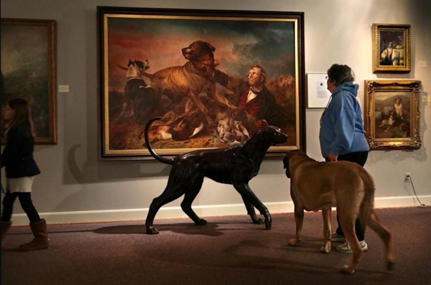 Por Que Todos Los Amamos Habrá Un Museo Del Perro En Neva York