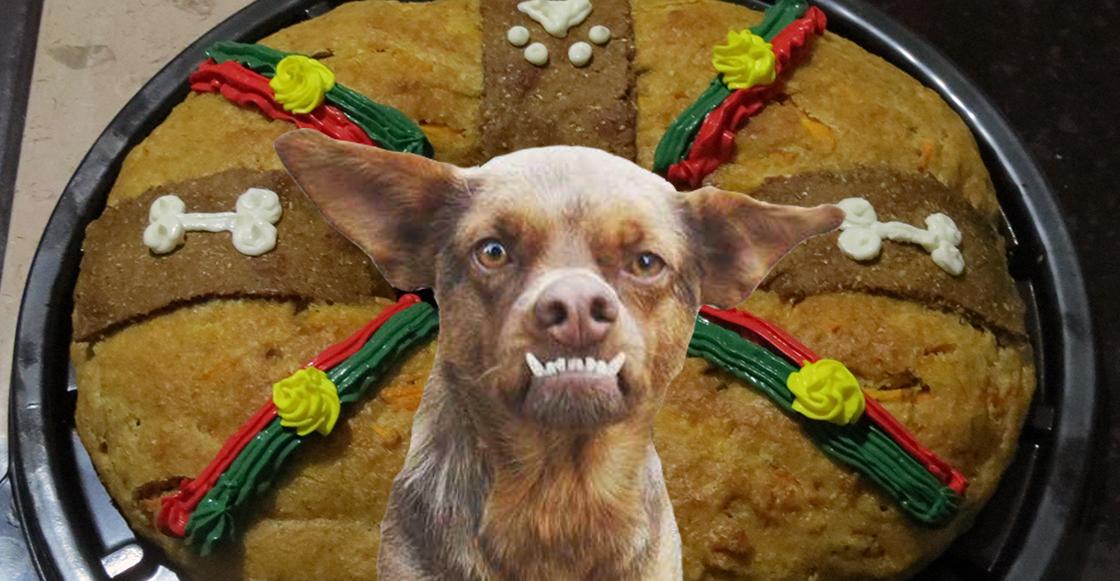 *Al Chilaquil le gusta esto*: Llegó la Rosca de Reyes para perritos (bien portados)
