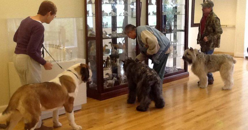 Por que todos los amamos: Habrá un Museo del Perro en Neva York