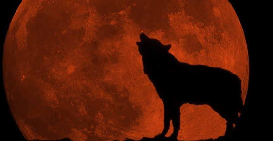 Dónde, cuándo y cómo ver la Superluna de Sangre de Lobo