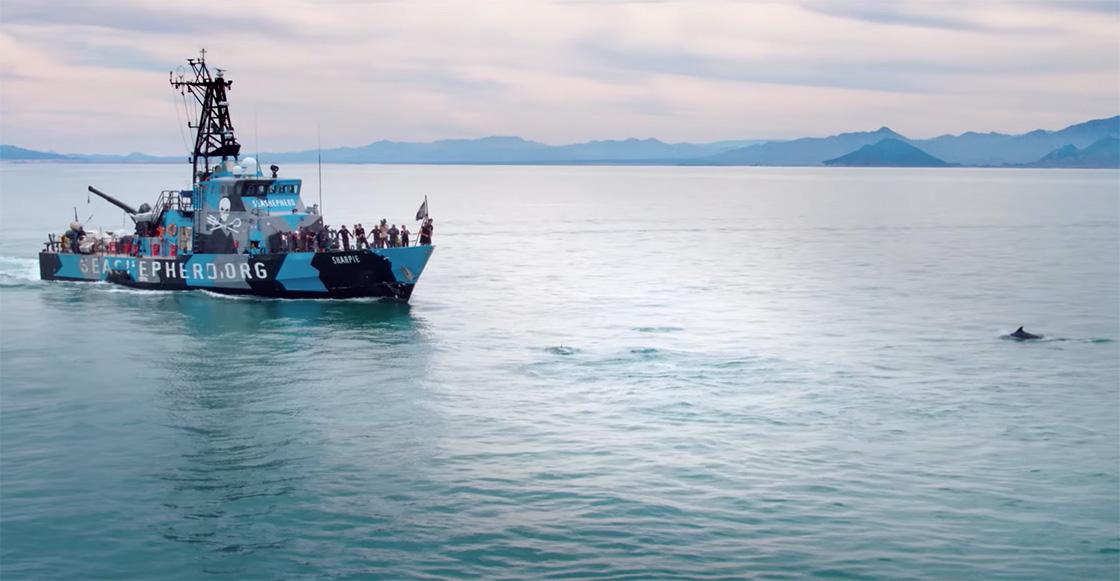 'Mar de sombras' revela en Sundance 2019 el tráfico ilegal de la 'cocaína acuática' en México