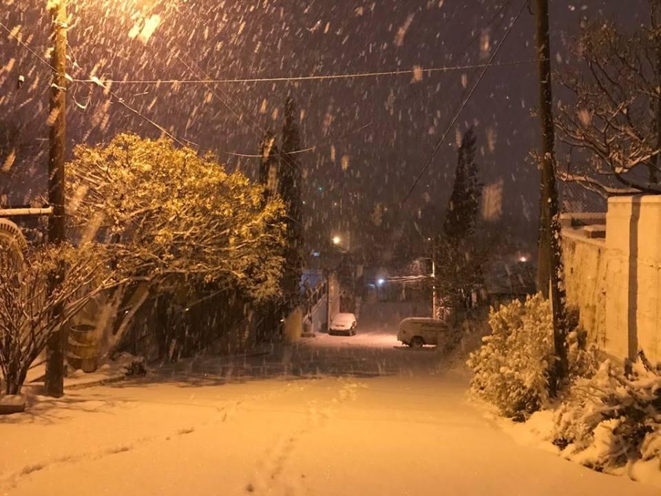 nevada-nogales-sonora-02