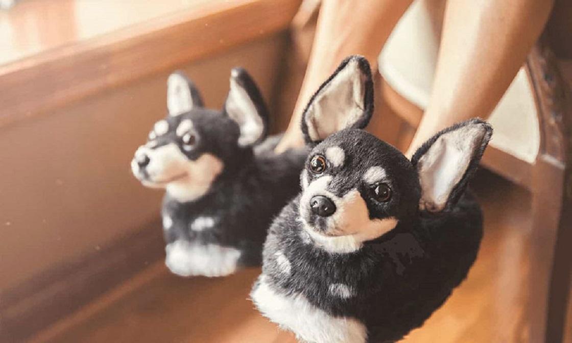 ¡Ahora puedes comprar pantuflas que lucen idénticas a tus mascotas!
