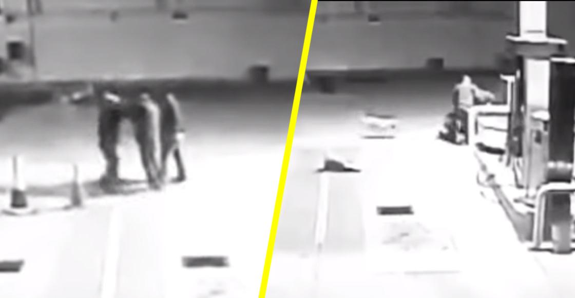 No todos los héroes usan capa: Perrito callejero evitó asalto en una gasolinera