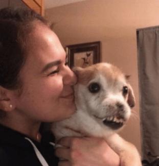 Conoce a Sniffles, el perrito deforme que todos aman y quieren adoptar