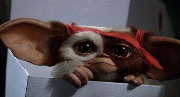 Que regrese Gizmo: ¡Están trabajando en una serie animada de los Gremlins!