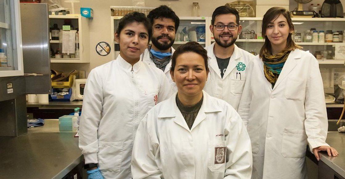 ¡Huelum!: Científica del IPN logra eliminar al 100% el VPH en 29 mujeres de CDMX