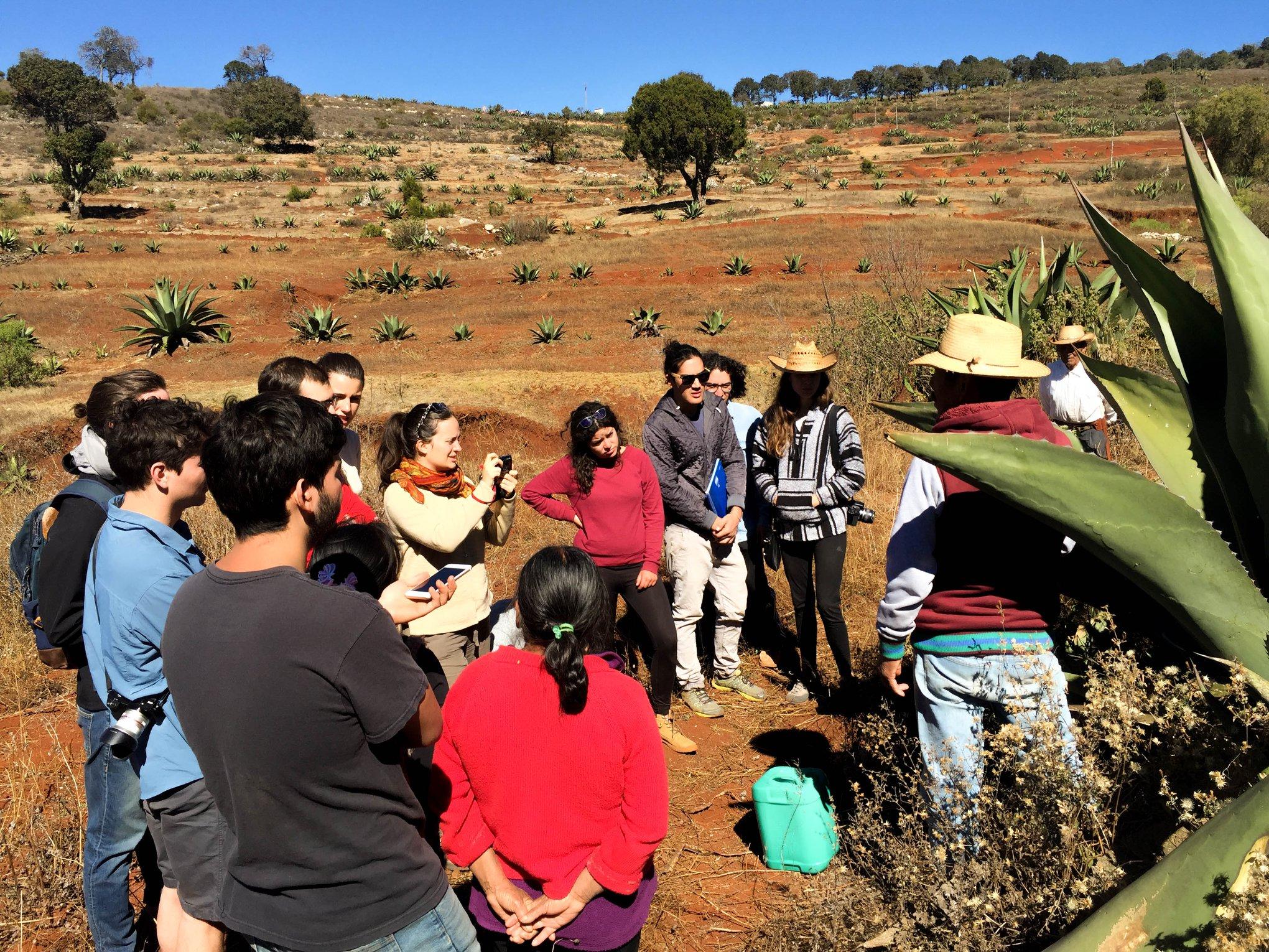 Conoce Rutopía, el nuevo servicio para hospedarte y conocer el ecoturismo rural