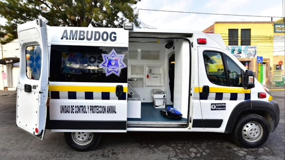 Ambudog, la primer ambulancia para animales en México