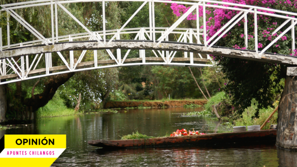 cuajimalpa-como-perder-un-rio