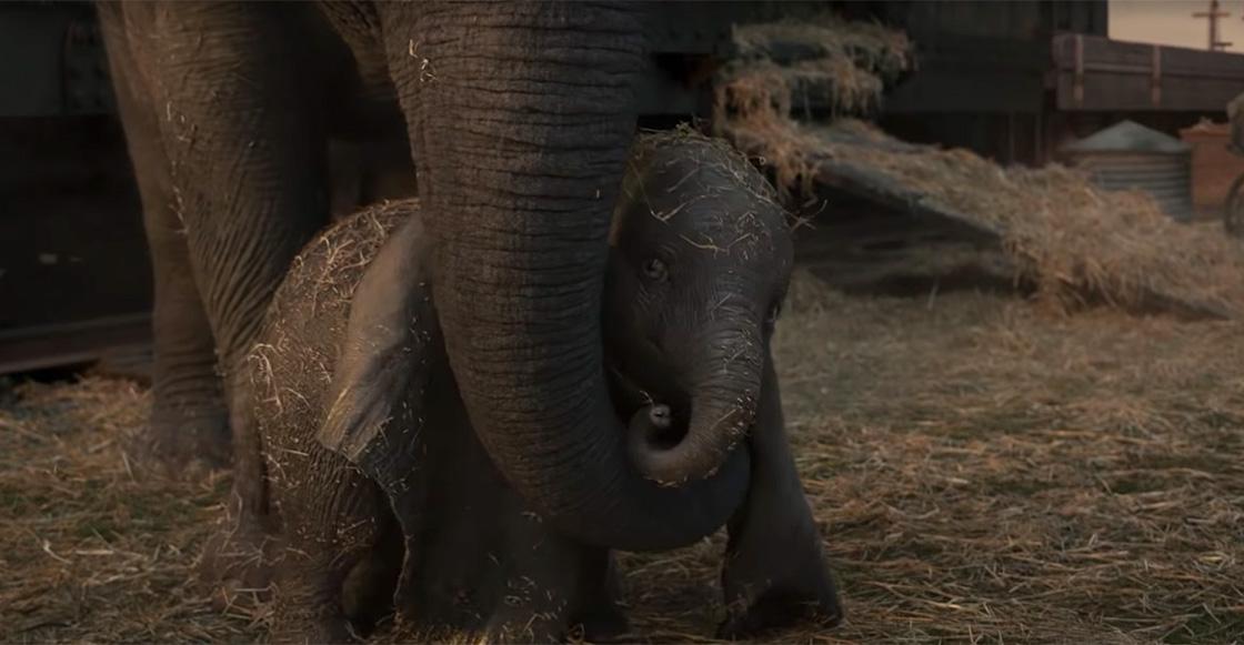 Fly, Dumbo! Checa el nuevo tráiler del live action de 'Dumbo' de Tim Burton