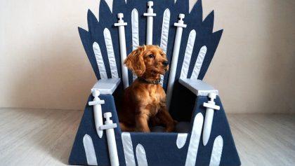 Para tu perrhijo: ¡Mira las camas de Game of Thrones para mascotas!
