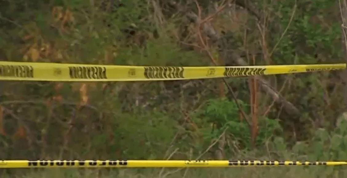 En Colima, van 69 cuerpos hallados en 49 fosas clandestinas