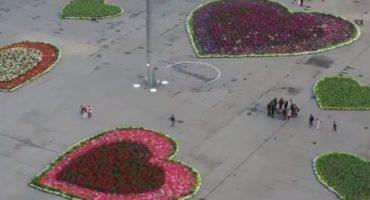 ¿Y la austeridad, apá? CDMX gasta casi dos millones en corazones florales del Zócalo