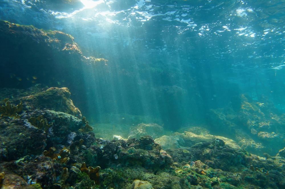 El mar está cambiando de color y todo debido al cambio climático