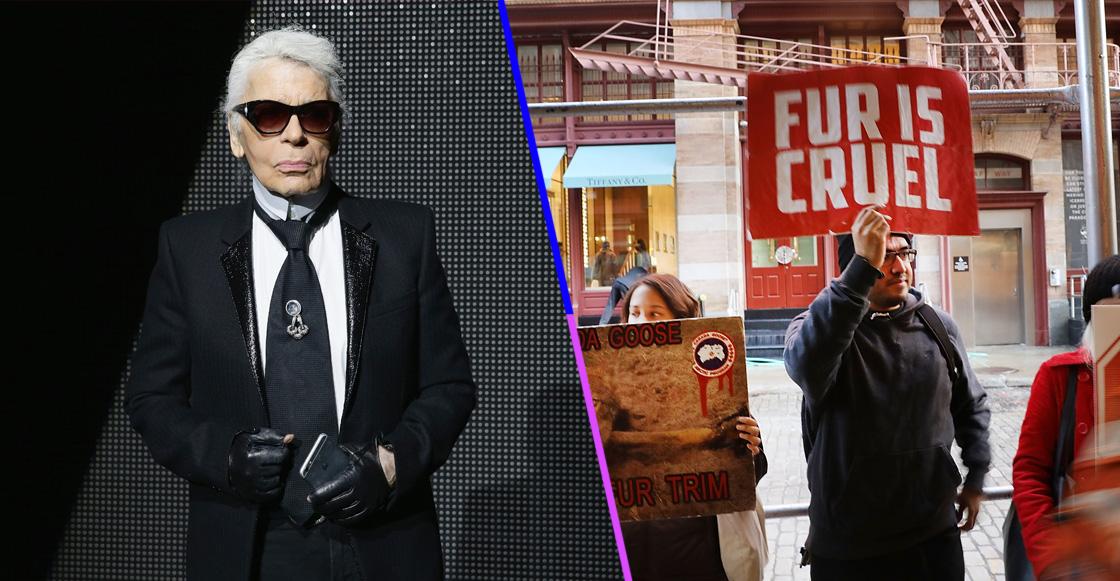 El inoportuno tuit de PETA sobre la muerte de Karl Lagerfeld