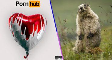 Liberen a sus marmotas al ritmo del disco de San Valentín de Pornhub