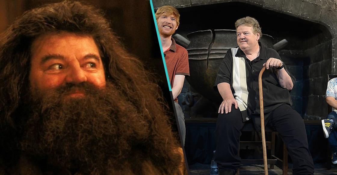 """""""Hagrid"""" de Harry Potter tuvo que quedarse en silla de ruedas debido a esta enfermedad"""