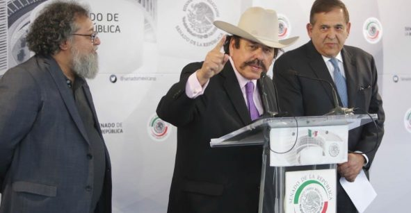 Armando Guadiana, senador