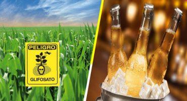 Detectan herbicida en cervezas y vinos de mayor venta 🍺🍷