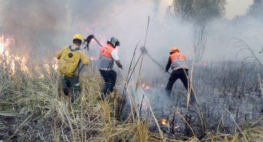 ¡Otra vez! Se reporta incendio en pastizal de Xochimilco, en la Ciudad de México